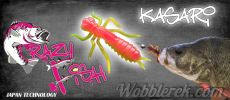 Crazy Fish Kasari